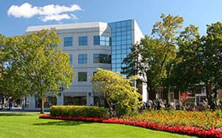 houston landscaping residential commercial brave landscapes